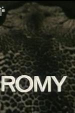 Romy - Portrait eines Gesichts