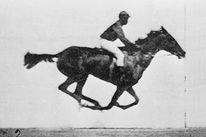 Sallie Gardner at a Gallop (C)