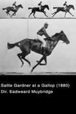 Sallie Gardner at a Gallop (The Horse in Motion) (C)