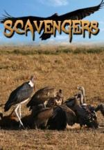 Depredadores de la sabana (TV)