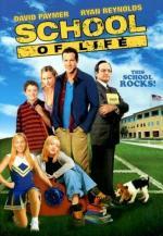 School of Life (TV)