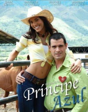 Se solicita príncipe azul (TV Series) (Serie de TV)