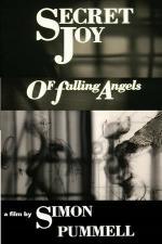 Secret Joy of Falling Angels (C)