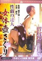 Seigi no tatsujin: Nyotai tsubo saguri