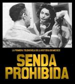 Senda prohibida (TV Series)