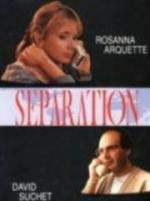Separation (TV)
