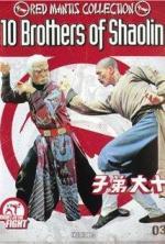 Shi Da Di Zi (Ten Brothers of Shaolin)