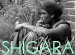 Shigara (C)