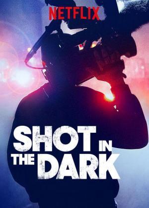 Shot in the Dark (TV Series)