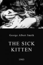 Sick Kitten (C)