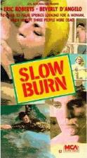 Lenta agonía (Slow Burn) (TV)