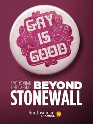 Más allá de Stonewall (Serie de TV)