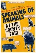 Speaking of Animals at the County Fair (C)