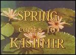 Spring Comes to Kashmir (C)