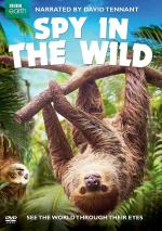 Spy in the Wild (Serie de TV)