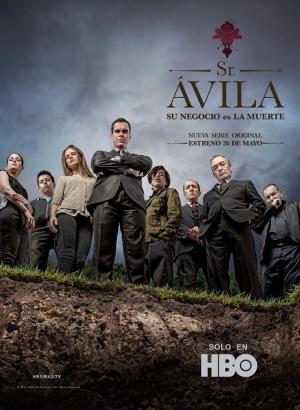 Sr. Ávila (Serie de TV)