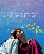 Sufjan Stevens: Mystery of Love (Music Video)