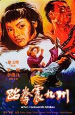 Tai quan zhen jiu zhou (When Taekwondo Strikes) (Sting of the Dragon Masters)
