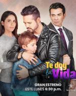 Te doy la vida (Serie de TV)