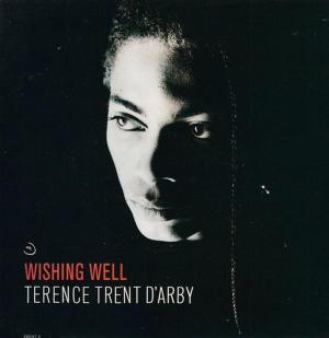 Terence Trent D'Arby: Wishing Well (Music Video)