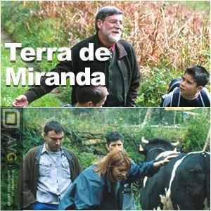Terra de Miranda (TV Series)