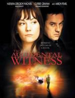 The Accidental Witness (TV)