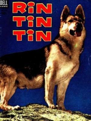 Las aventuras de Rin-Tin-Tin (Serie de TV)