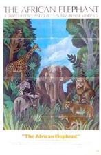 El coloso de la selva
