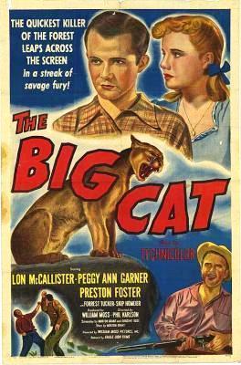 El gran gato