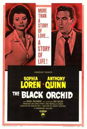 The Black Orchid