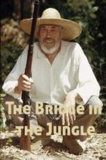 Un puente en la jungla