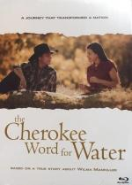 The Cherokee Word for Water