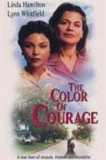 The Color of Courage (TV)
