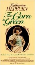 El trigo está verde