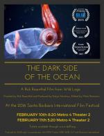 The Dark Side of the Ocean