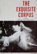 The Exquisite Corpus (C)