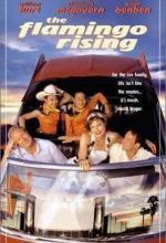 The Flamingo Rising (TV)