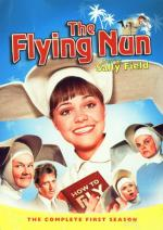 The Flying Nun (TV Series)