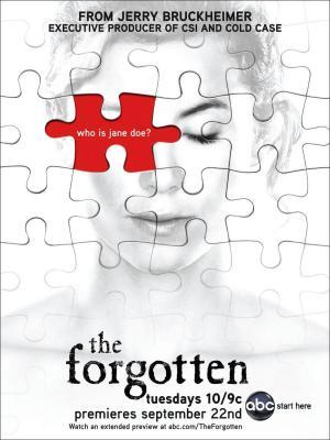 The Forgotten (TV Series) (Serie de TV)