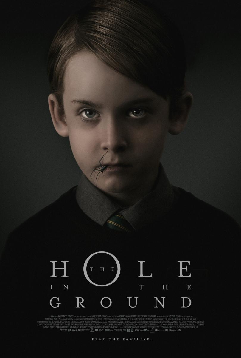 The Hole in the Ground (El bosque maldito) (2019) | DVDRip Latino HD GoogleDrive 1 Link