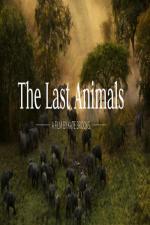 The Last Animals