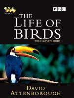 La vida de las aves (Miniserie de TV)