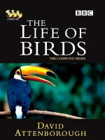 The Life of Birds (TV Series)