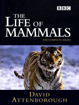 La vida de los mamíferos (Serie de TV)