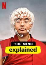 La mente, en pocas palabras (Miniserie de TV)