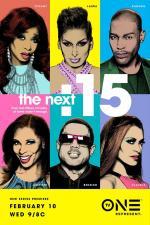 The Next 15 (Serie de TV)