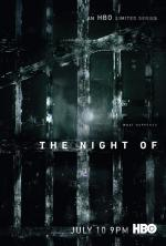 The Night Of (TV)