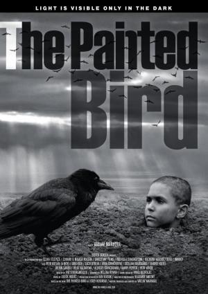 El pájaro pintado