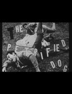The Petrified Dog (C)