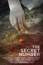 The Secret Number (C)